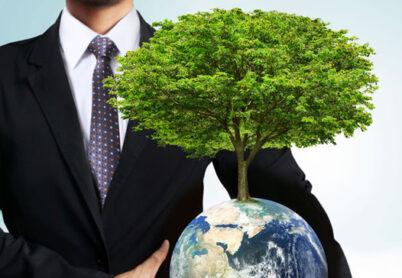 Environmental education as a global trend